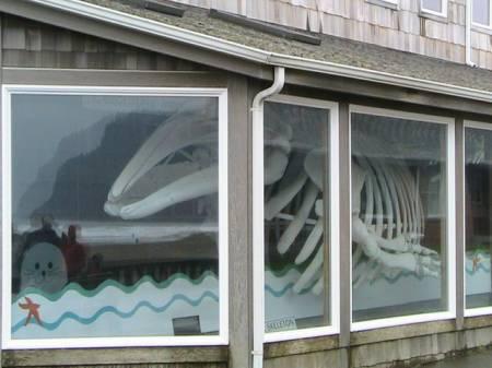 Whale Bones, Newport Oregon