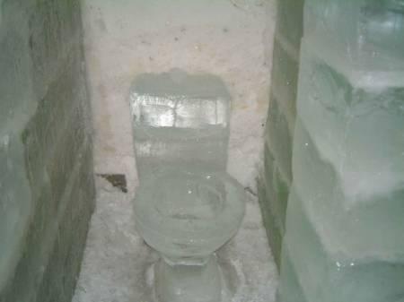 485-toilet.jpg