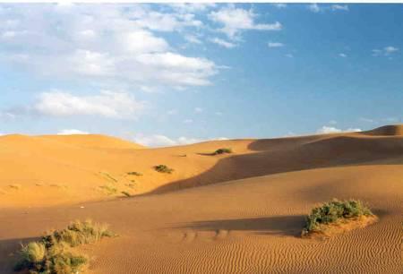 South_of_Al_Kharj..jpg